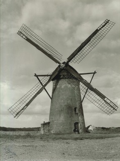 The tower windmill around 1950, view from the south